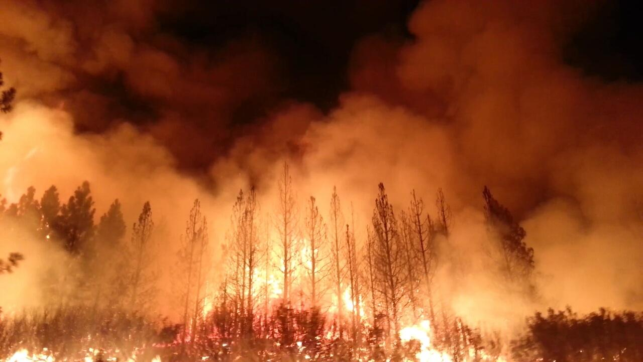 Wildfire Preparedness Info & Checklist: Keeping Your Home Safe